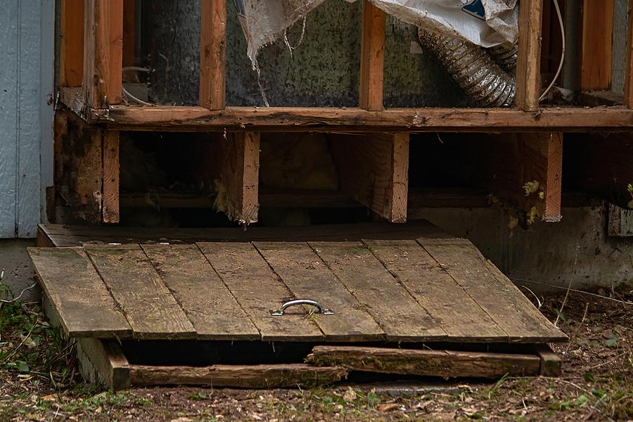 wood door to basement